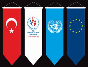 kırlangıç bayrak